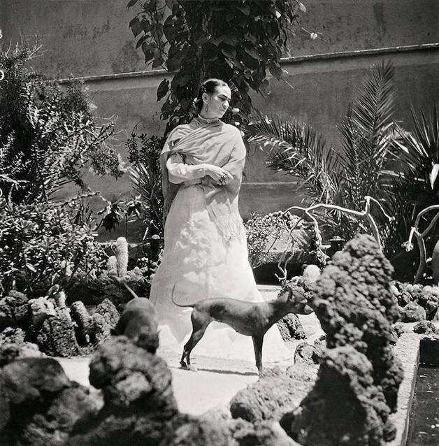 Fotos raras mostram frida kahlo em seus ltimos dias de for Cuartos decorados de frida kahlo