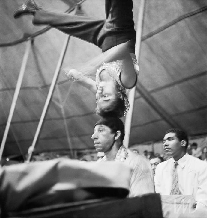 © José Medeiros - Circo. Rio de Janeiro. dec. 1950 – Coleção José Medeiros/Acervo Instituto Moreira Salles